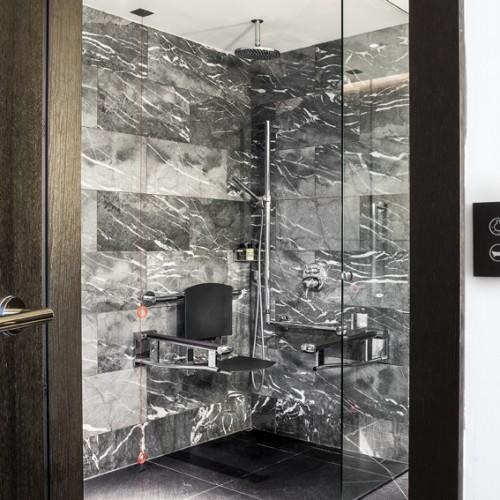 Disabled Bathroom Shower -